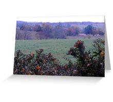 Autumn Leaves on Asters Greeting Card
