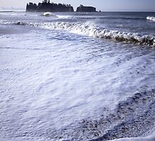 James Island from Rialto Beach, Olympic National Park, Washington by Vern Treat