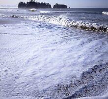 James Island from Rialto Beach, Olympic National Park, Washington by Vern Treat
