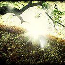 """""""Winter Always Turns into Spring"""" by Ellen Cotton"""