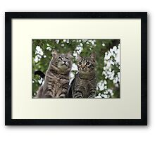 One Day Beaker, all this will be yours. Framed Print