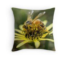 Bee-u-tifull Daisy Throw Pillow
