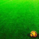 Soccer by Hallvor