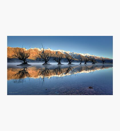 Guardians of the Lake Photographic Print