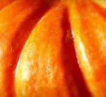 Pumpkin Orange! by paintingsheep