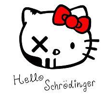 Schrodinger's Kat by UrbanDog