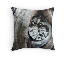 aging~ Throw Pillow