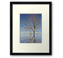 Sweetness of the Seasons Framed Print