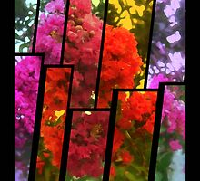 Crape Myrtle Tinted 2 by Christopher Johnson