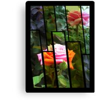 Pink Roses in Anzures 5  Tinted 1 Canvas Print