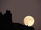 Hunter's Moon by BettyEDuncan