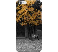 A Peaceful Day At The Park iPhone Case/Skin