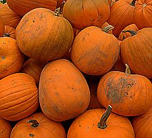 Pumpkins by Lou Wilson