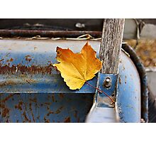 Rustic  Photographic Print