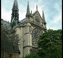 Notre Dame Cathedral by blue-roses