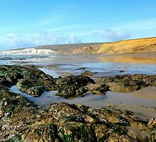 Compton Bay by Peter Rivron