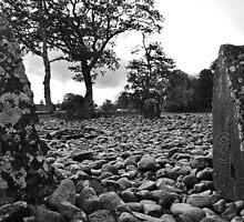Temple Wood  by Ian Mac