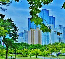 Busan, South Korea by Fike2308