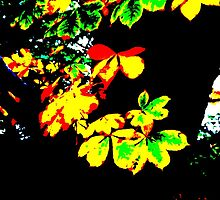 Posterized Plant by Nik Watt