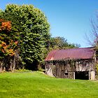 BARN WITH VINES by Pauline Evans
