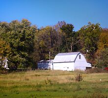 OLD WHITE BARN IN THE KNOBS OF INDIANA by Pauline Evans