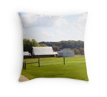 MORE BARNS IN INDIANA Throw Pillow