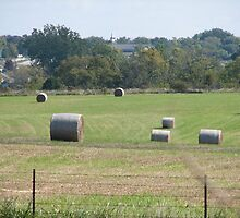 Hay in the Fields by PicsbyJody