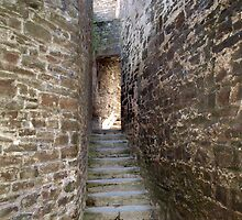 Conwy Castle 154 by kalaryder