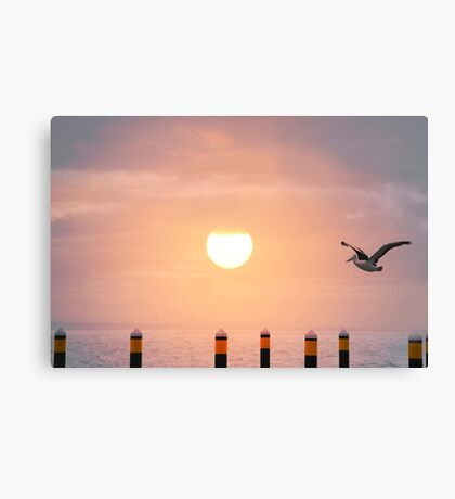 Sunset Pelican Canvas Print
