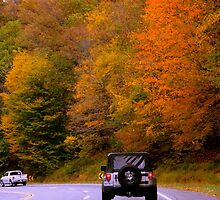Autumn Drive by ctheworld