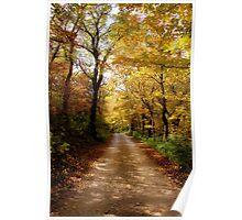Colorful Back Roads Poster