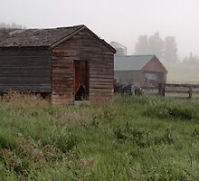 Glenbow Ranch by ldredge