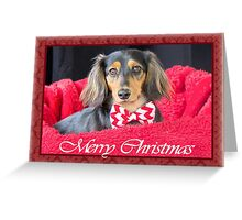 A very doxie Christmas 9 Greeting Card