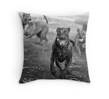 Dogs with game face on .29 Throw Pillow