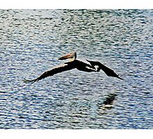 Pelican Flying Over Water Photographic Print