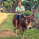 The Happy Cow Boy, Phong Nha, Vietnam, 2013 by Zati