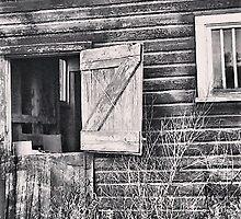 Swinging on the Barn Door by Kim Taylor