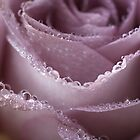 ALL THAT GLITTERS IN PURPLE by edesigns14