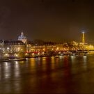 Paris by night. by naranzaria