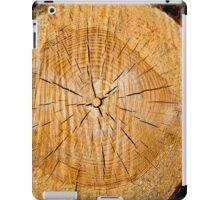 Slice of Life iPad Case/Skin