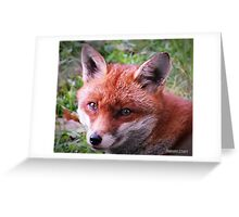 """"""" The wonder of nature"""" Greeting Card"""