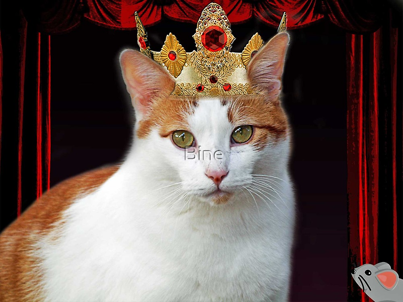 Her Royal Kittyness by Bine