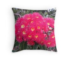 Red Flowering Gum Throw Pillow