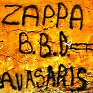 Zappa Spring by George Hunter