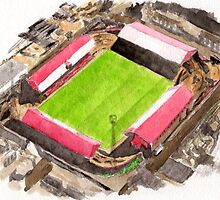 Middlesbrough - Ayresome Park by sidfox