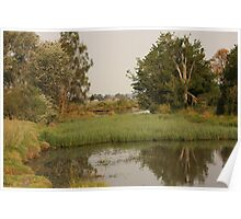 Swamp At Doughboy Hollow Poster