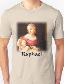 Raphael - Bridgewater Madonna T-Shirt