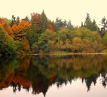 Autumn Reflections by RdwnggrlDesigns