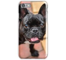 Happy Frenchie iPhone Case/Skin
