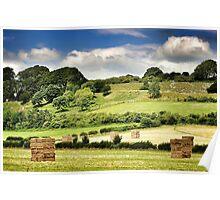 Hay-henge Poster